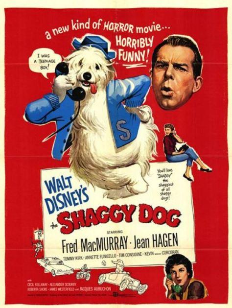 Shaggy Dog - Hör mal wer da bellt
