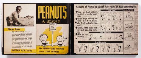 Kein Strich zu viel - 65 Jahre Peanuts
