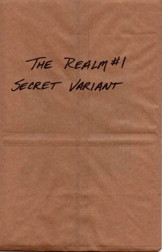 the-realm-1-secret-cover
