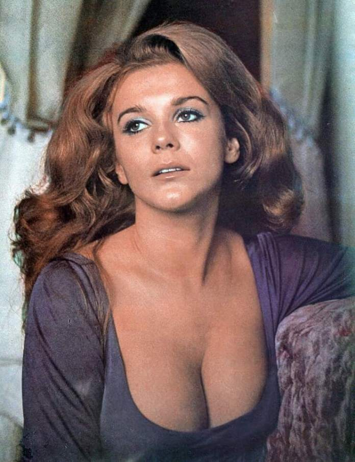 63 Ann –Margret Sexy Pictures Will Make You Fall In Love With Her | CBG