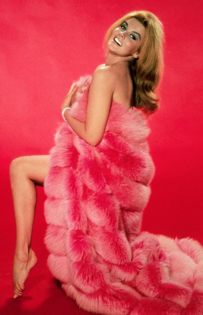 Ann Margret hot