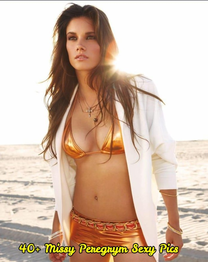Missy Peregrym sexy pictures