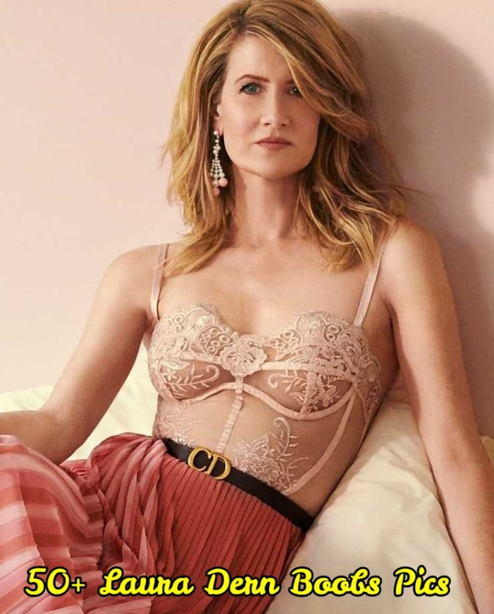 Laura Dern Boobs Pics