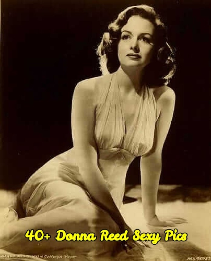 Donna Reed Sexy Pics