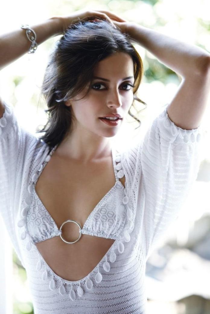 Emmanuelle Vaugier hot look