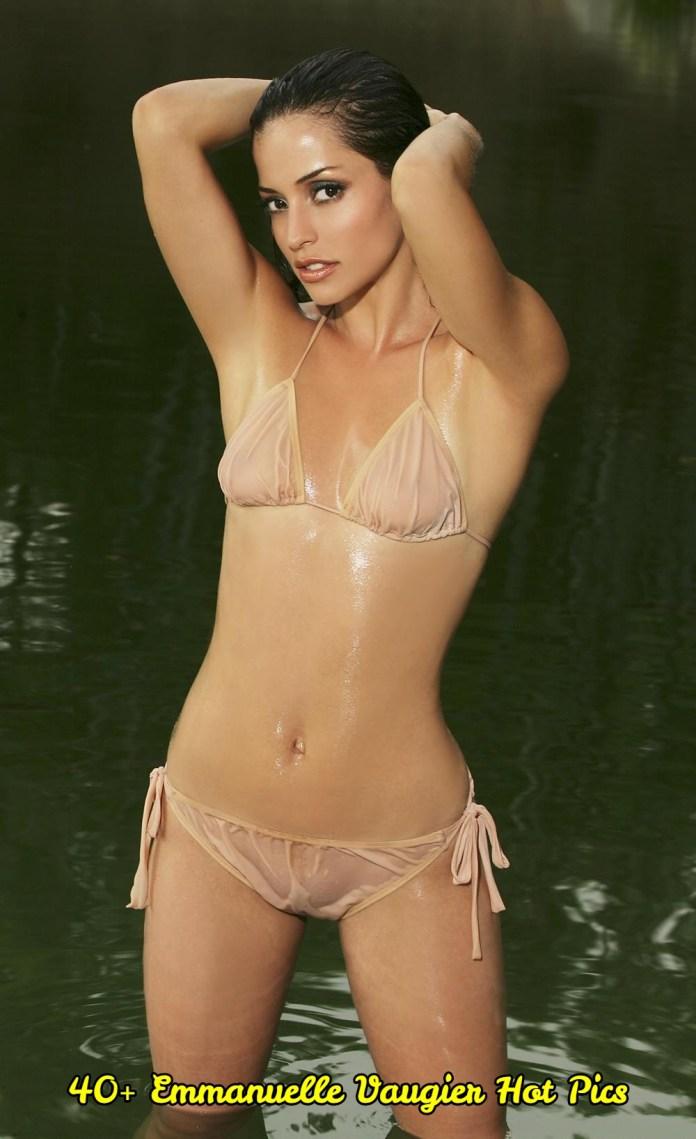 Emmanuelle Vaugier hot pictures