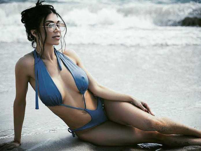 Rosa Mendes lingerie pics