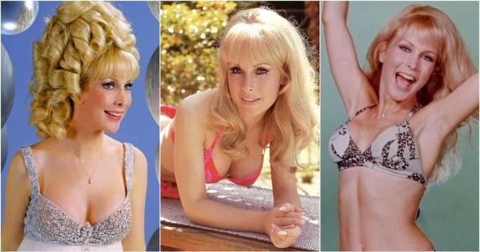 41 Hottest Pictures Of Barbara Eden
