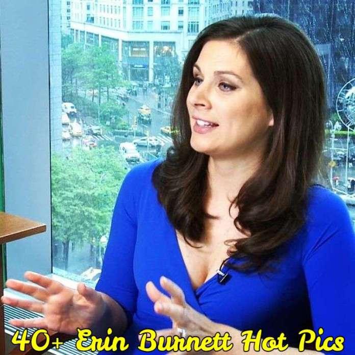 Erin Burnett Hot Pics