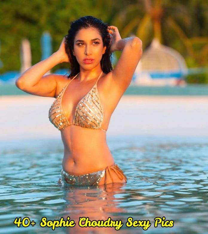 Sophie Choudry sexy pictures