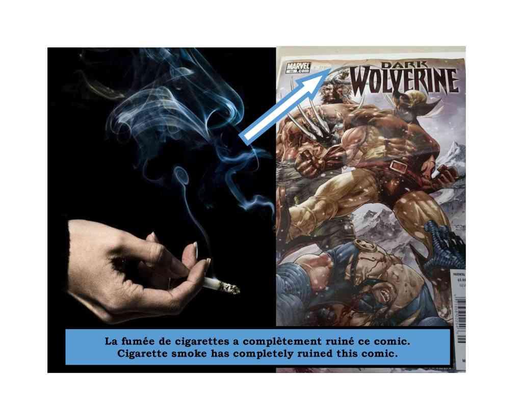fumee de cigarettes1