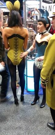 Playboy corset