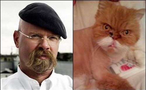 cats who look like famous people 2 Jamie Hyneman