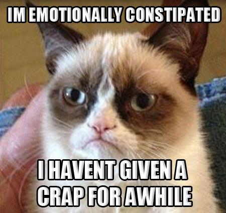 Grumpy Cat EMOTINOALLY CONSTIPATED