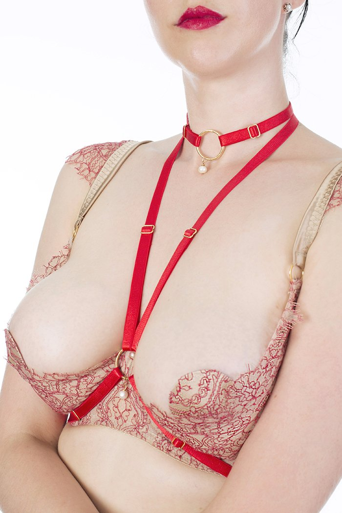 Aurora_Red_Harness_and_Choker_Front_Close_Up_106000de-4574-48c5-95b0-61f271cceef2