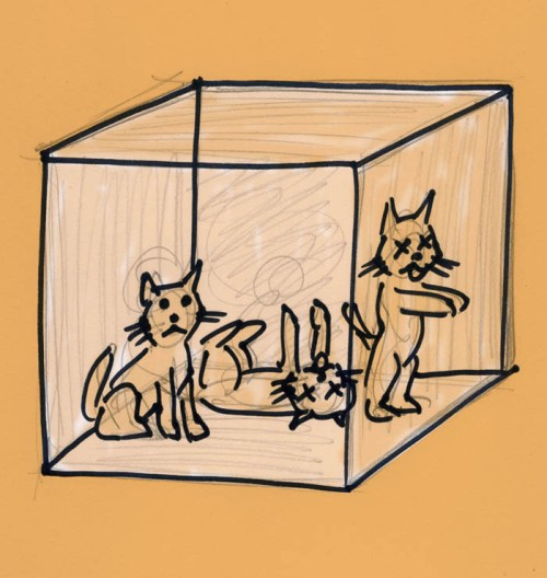 """Schrödinger's Cat"" illustration by Henry Chamberlain"