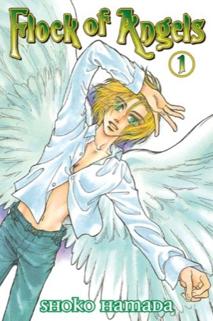 Flock of Angels volume 1 cover
