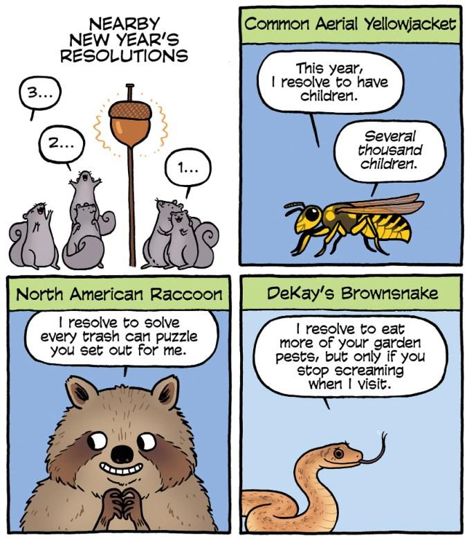 Your Wild City: Resolutions (excerpt)