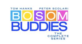 Bosom Buddies show logo