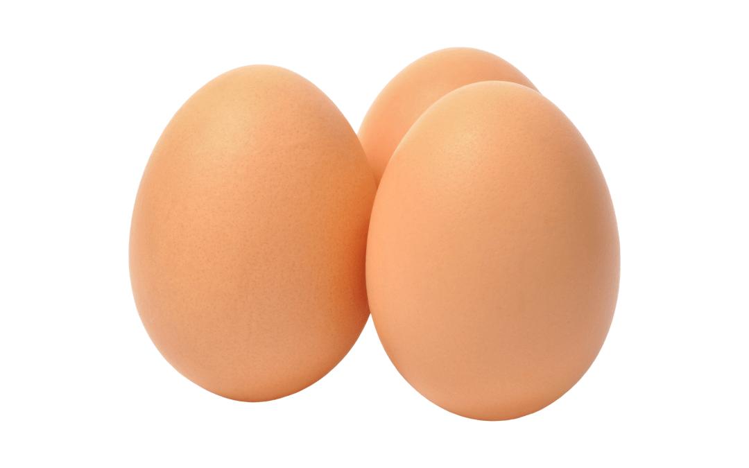 introduzir ovo ao bebé