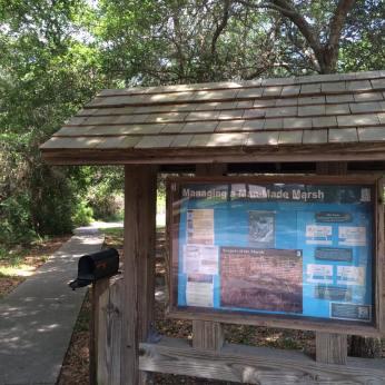 huntington beach park 4