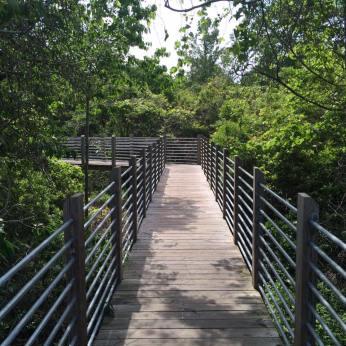huntington beach park 7