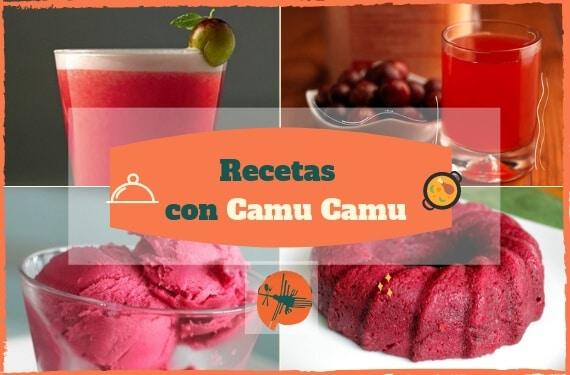 Recetas con Camu Camu