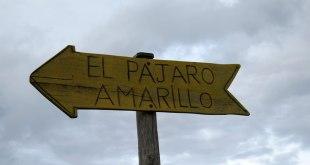 El Pajaro Amarillo Oyambre
