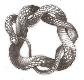 coiling_snake_by_kielrae