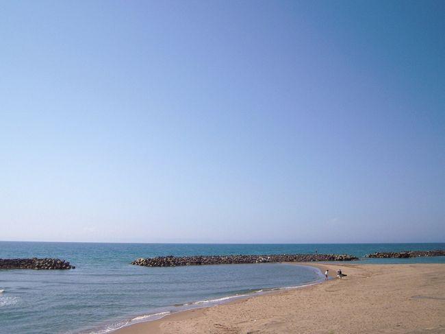 サスペンス+日本海