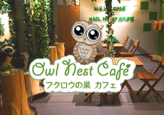 フクロウの巣カフェ