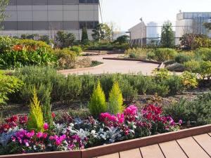 ebisu green garden(エビス グリーンガーデン)