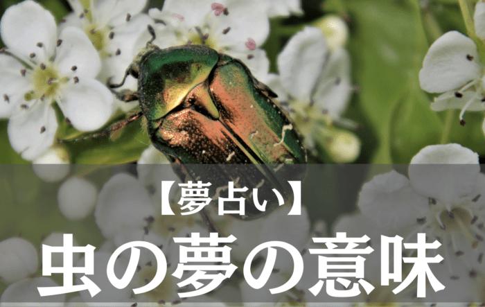 【夢占い】 (2)