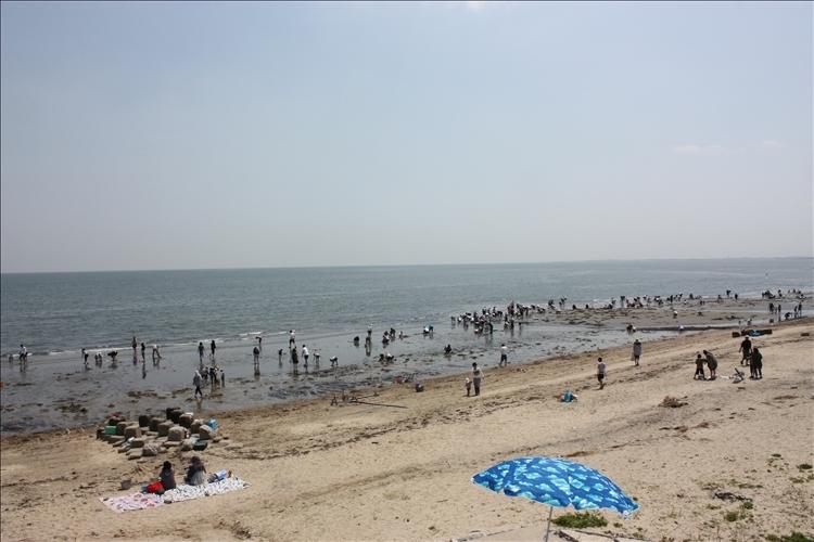 潮干狩り -香良洲海岸&松名瀬海岸-