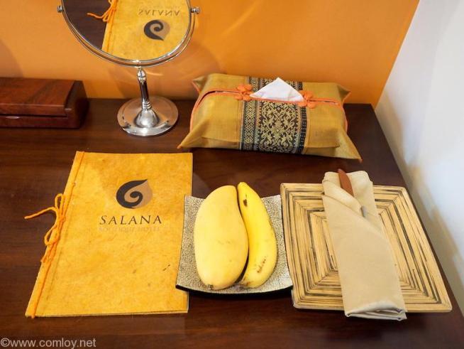 Salana Boutique Hotel,Vientiane 室内