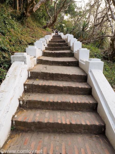 プーシーの丘 階段