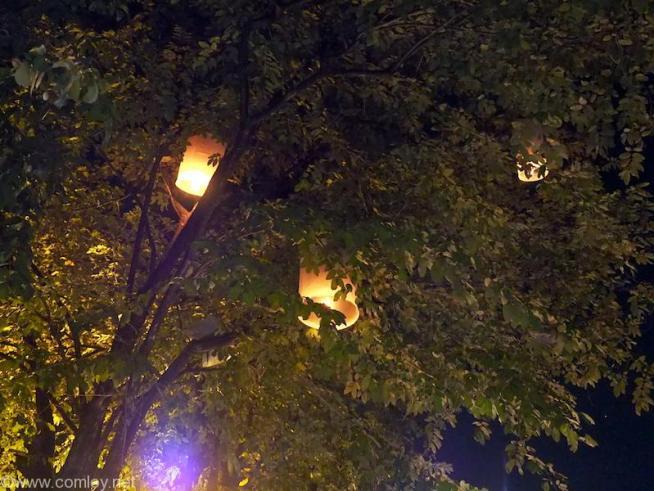 飛ばし損なって木に引っかかっちゃうこともあります。火事が心配です。