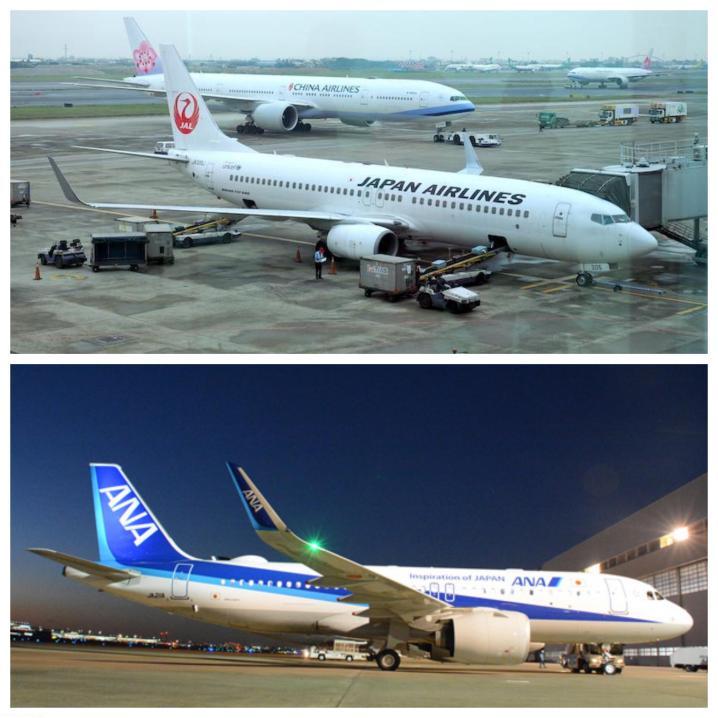 JAL B737 vs ANA A320neo