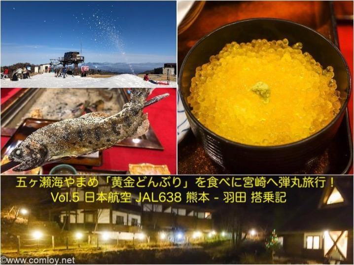 五ヶ瀬旅行Vol.5 日本航空 JAL638 熊本 - 羽田 搭乗記