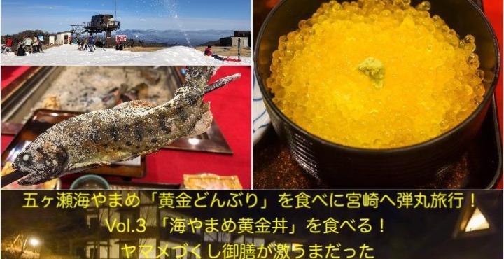 五ヶ瀬旅行Vol.3 「海やまめ黄金丼」を食べる!ヤマメづくし御膳が激うまだった