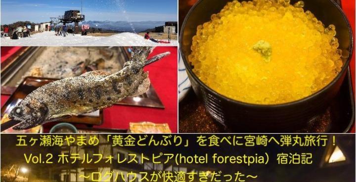 五ヶ瀬旅行Vol.2 ホテルフォレストピア(hotel forestpia)宿泊記〜ログハウスが快適すぎだった〜