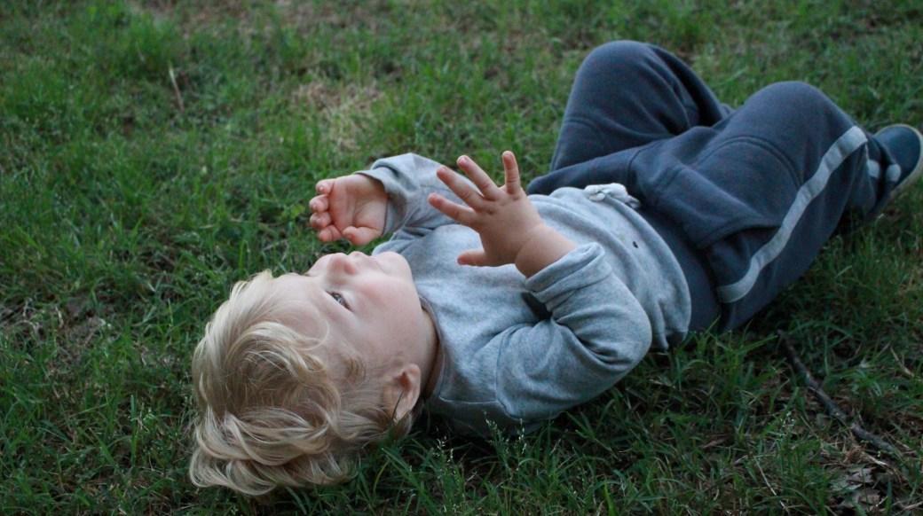 babygrass