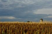 Observation Tower, Antietam National Battlefield Park, Sharpsburg, Maryland, October 22, 2013