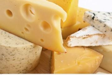 Cómo conservar el queso en casa 4