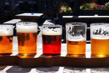 Hablemos de la cerveza 1