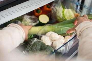 conservación de los alimentos en el frigorífico