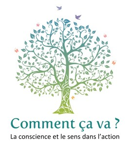 logo ccv entreprises