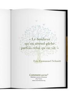 bonheur-eric-emmanuel-schmitt-meditation-pleine-conscience-mbsr-lille-mindfulness-emotions