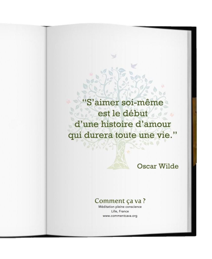 Saimer Soi Meme Citation Oscar Wilde Emotion Mindfulness