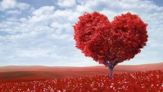 graine-amour-saint-valentin-poeme-atrhur-rimbaud-meditation-mindfulness